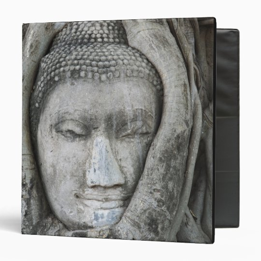 Sandstone head of Buddha surrounded by tree Binder