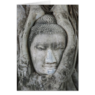 Sandstone head of Buddha surrounded by tree Card