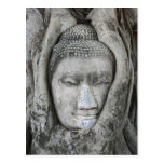 Sandstone head of Buddha surrounded by tree Postcard