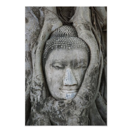 Sandstone head of Buddha surrounded by tree Poster