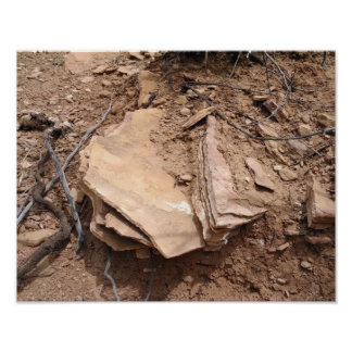 Sandstone shaped by erosion, hogback foothills poster