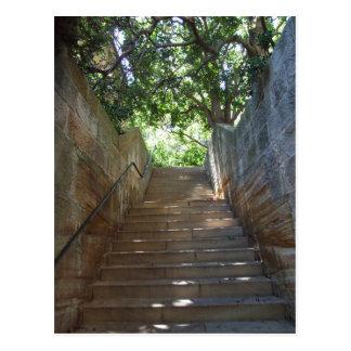 Sandstone Steps Postcard