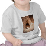 Sandstone Still Life Tshirt