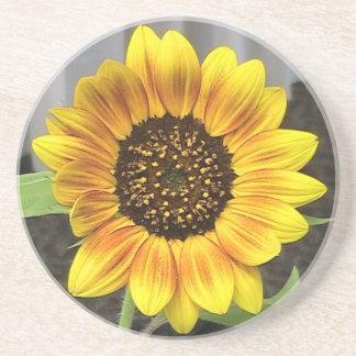 Sandstone Sunflower Coaster