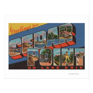 Sandusky Ohio - el lago Erie - punto del cedro Tarjeta Postal