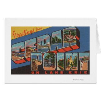 Sandusky, Ohio - Lake Erie - Cedar Point Card