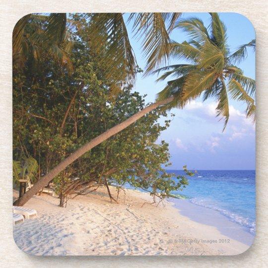 Sandy Beach 10 Coaster