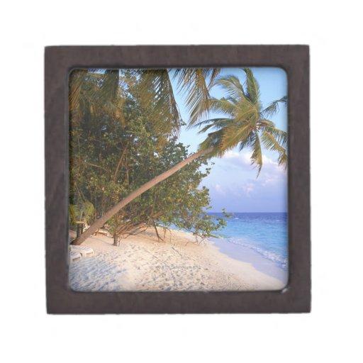 Sandy Beach 10 Premium Trinket Box