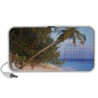 Sandy Beach 10 Travel Speaker