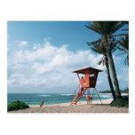 Sandy Beach 5 Postcard