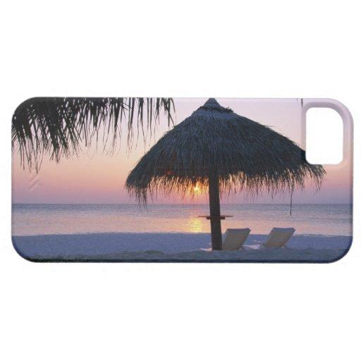 Sandy Beach 6 iPhone 5 Covers