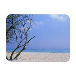 Sandy Beach 9 Magnet
