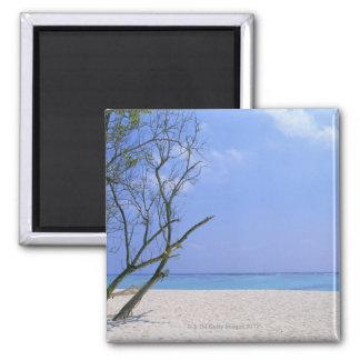 Sandy Beach 9 Fridge Magnet