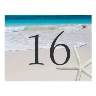 Sandy Beach and Starfish Table Number Cards Post Cards