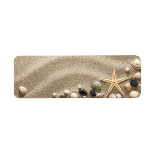 Sandy Beach Background With Shells And Starfish Labels