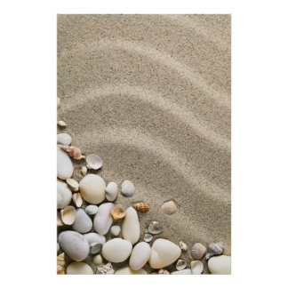 Sandy Beach Background With Shells And Stones Poster