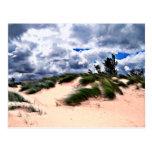 Sandy Beach Dune Grass Post Cards