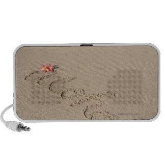 Sandy beach speaker