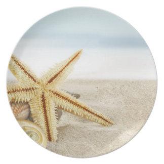 Sandy Beach Starfish Seashells Plate
