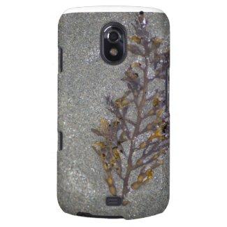 Sandy Beach Textures Galaxy Nexus Covers