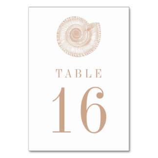 Sandy Beige Tan Sea Shell Table Number Card