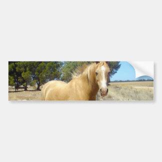 Sandy_Brown_Horse,_ Car Bumper Sticker