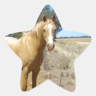 Sandy_Brown_Horse,_ Star Sticker