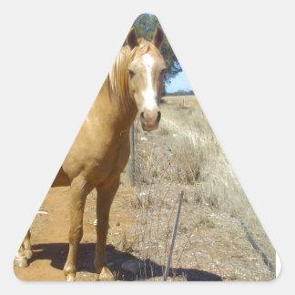 Sandy_Brown_Horse,_ Triangle Sticker