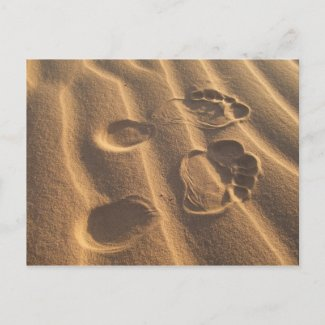 SANDY FEET postcard