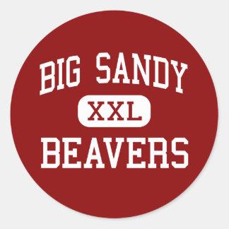 Sandy grande - castores - alta - Chattanooga Pegatinas Redondas