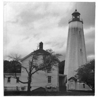 Sandy Hook Lighthouse Napkin
