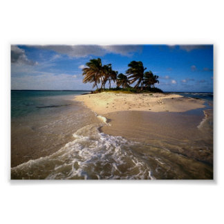 Sandy Island, Anguilla, Caribbean Poster
