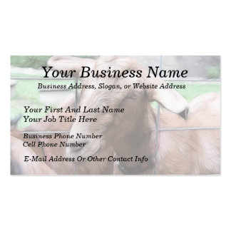 Sandy la cabra en la puerta plantillas de tarjetas de visita
