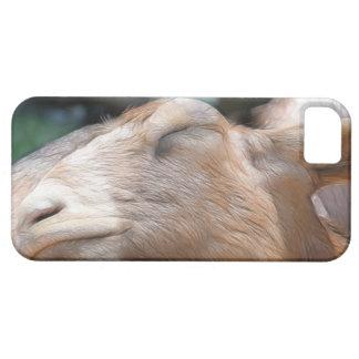 ¡Sandy la cabra - tiempo de la siesta! Funda Para iPhone SE/5/5s