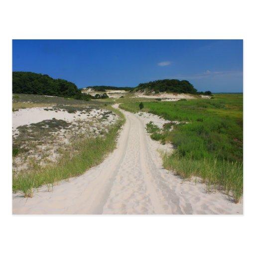 Sandy Neck Beach Marsh Trail Barnstable Cape Cod Postcard