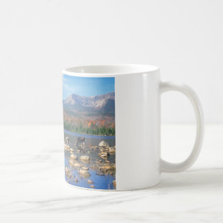 Sandy Stream Pond and Moose Coffee Mug