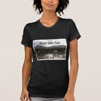 Sandy Stream Pond Shirt