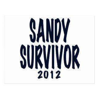 SANDY SURVIVOR 2012, black,Sandy survivor gifts Postcard
