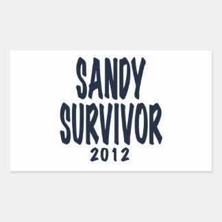 SANDY SURVIVOR 2012, black,Sandy survivor gifts Rectangular Sticker