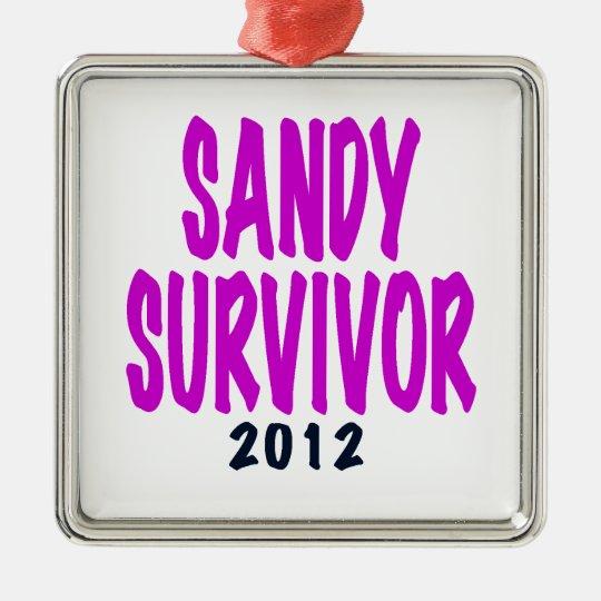 SANDY SURVIVOR 2012 chartreus Sandy survivor gifts Metal Ornament