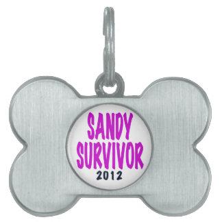 SANDY SURVIVOR 2012 chartreus Sandy survivor gifts Pet Tags