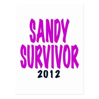 SANDY SURVIVOR 2012 chartreus Sandy survivor gifts Postcard