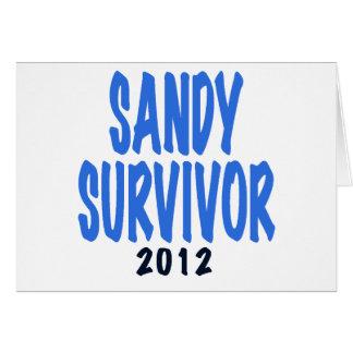 SANDY SURVIVOR 2012, lt. blue, Sandy survivor gift Card