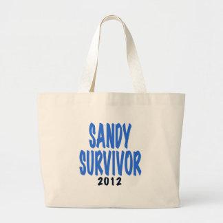 SANDY SURVIVOR 2012, lt. blue, Sandy survivor gift Large Tote Bag