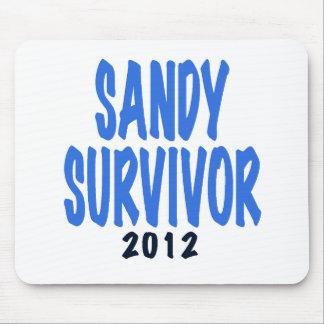 SANDY SURVIVOR 2012, lt. blue, Sandy survivor gift Mousepads