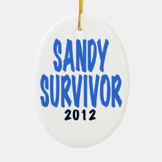 SANDY SURVIVOR 2012, lt. blue, Sandy survivor gift Ornament