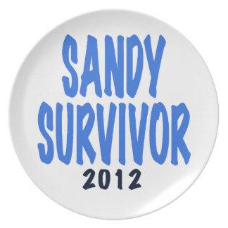 SANDY SURVIVOR 2012, lt. blue, Sandy survivor gift Dinner Plate