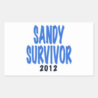 SANDY SURVIVOR 2012, lt. blue, Sandy survivor gift Rectangular Sticker