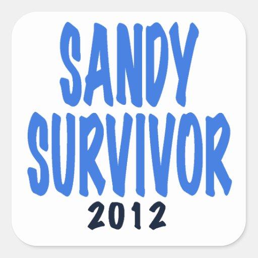 SANDY SURVIVOR 2012, lt. blue, Sandy survivor gift Square Sticker