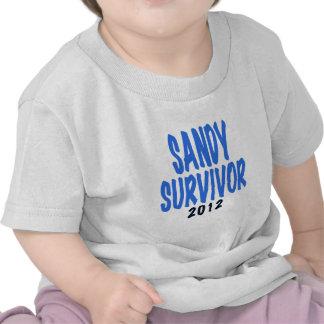 SANDY SURVIVOR 2012, lt. blue, Sandy survivor gift Tshirt